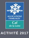 Activité 2017 – Caf de La Loire